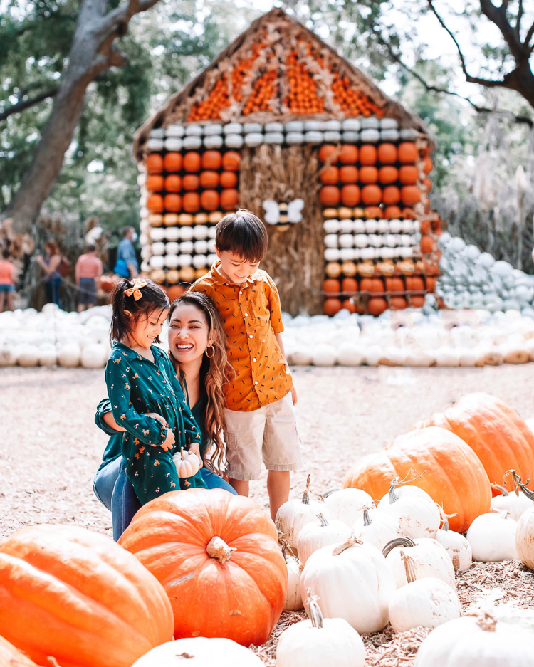 cute & little | dallas fashion blogger | fall coordinating family photo outfit ideas | dallas arboretum pumpkin patch village |Family Outfits by popular Dallas petite fashion blog, Cute and Little: image of a family sitting in a pile of pumpkins and wearing a green blouse, rust color polo, orange button up, brown fabric sneakers, Rvca jeans, American Eagle AE Ne(x)t Level High Waisted Jegging,BEARPAW Koko Buckle Strap Faux Fur & Genuine Sheepskin Lined Boot,Nike Killshot 2 Leather,BEARPAW Kids' Rosie Fashion Boot,The Children's Place Boys Pull-on Cargo Shorts, and green fox print dress.